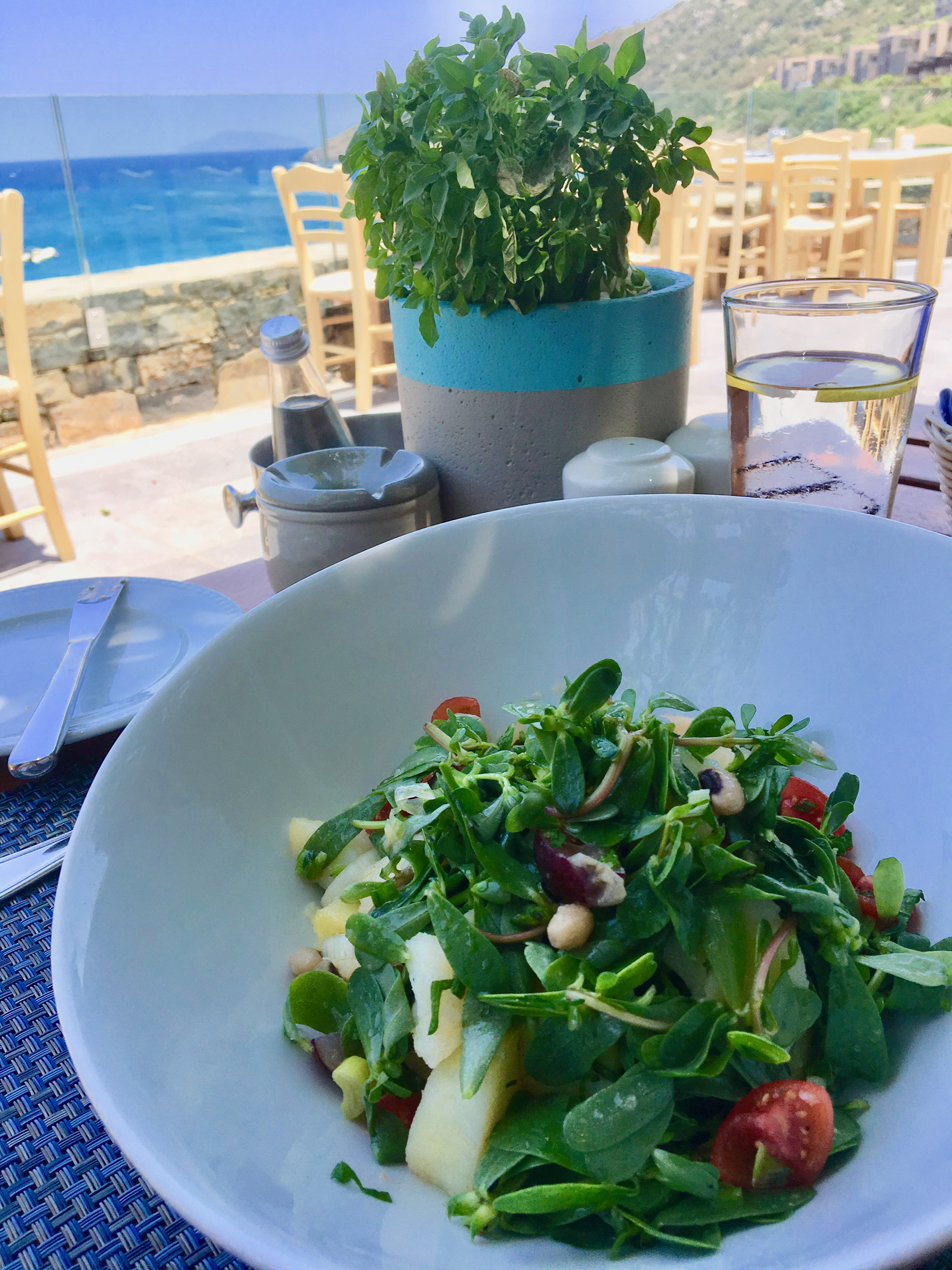 Daios Cove luxury resort and villas Crete, Greece, TAVERNA, Portulaca salad